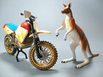n2_bike_kangaroo.jpg - 14979 Bytes
